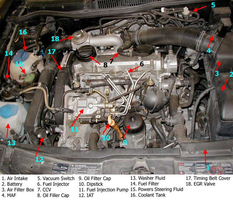 2006 Vw Jetta Engine Diagram Wiring Diagram System Trite Dignal Trite Dignal Ediliadesign It