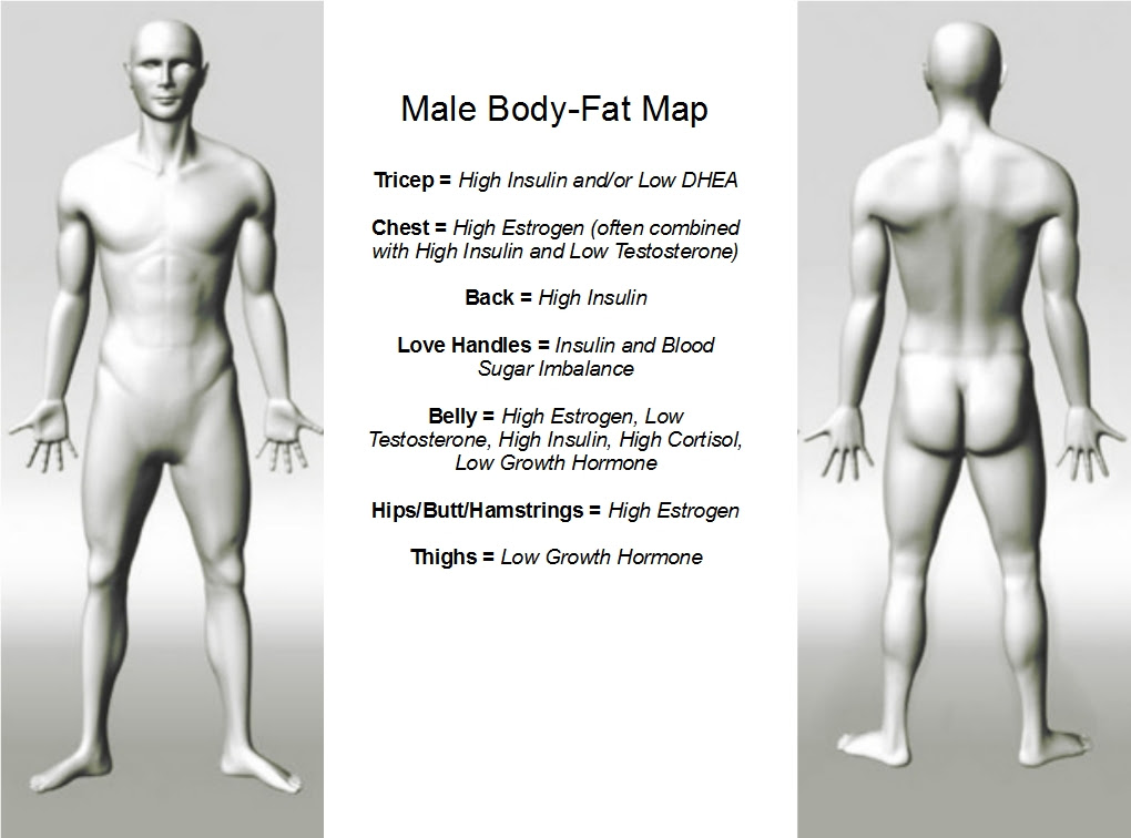 how does body fat percentage relate to bmi
