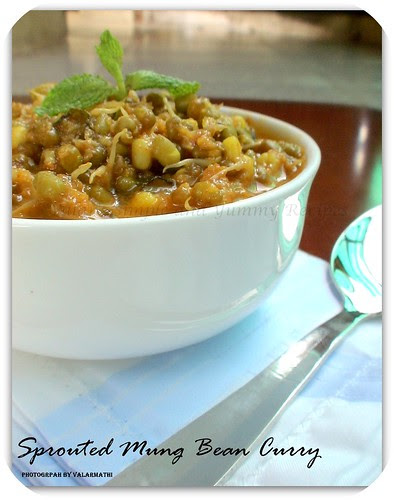 Sprouted Mung Bean Curry