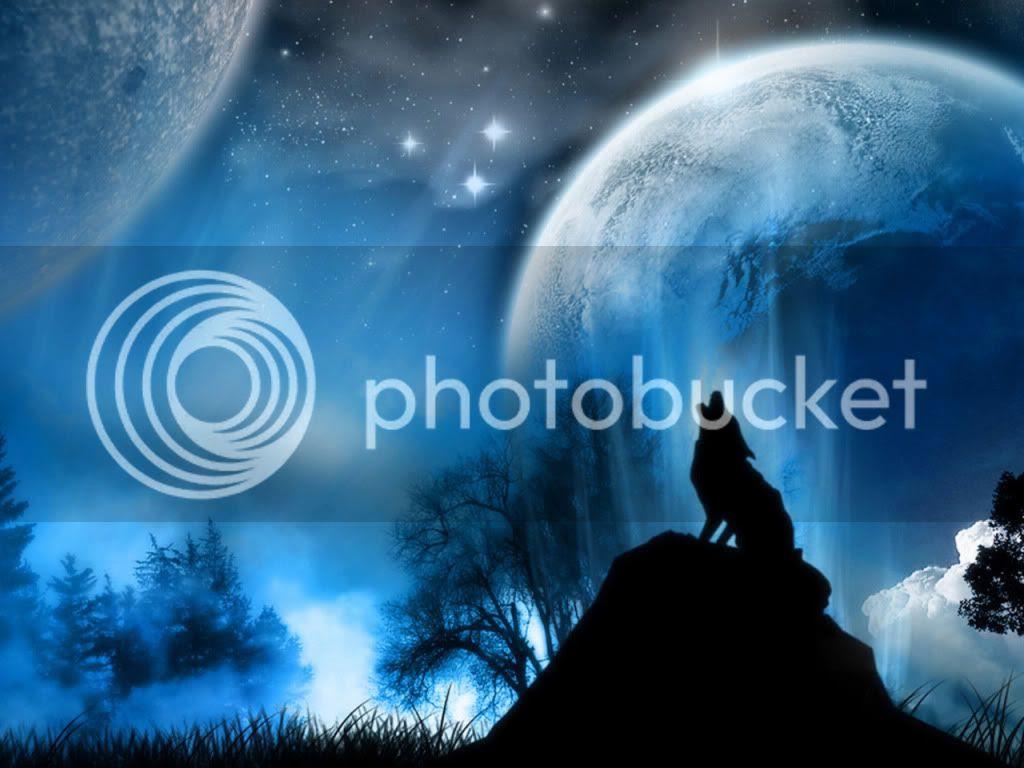 wolf moon photo: Wolf Moon Wonderland.jpg