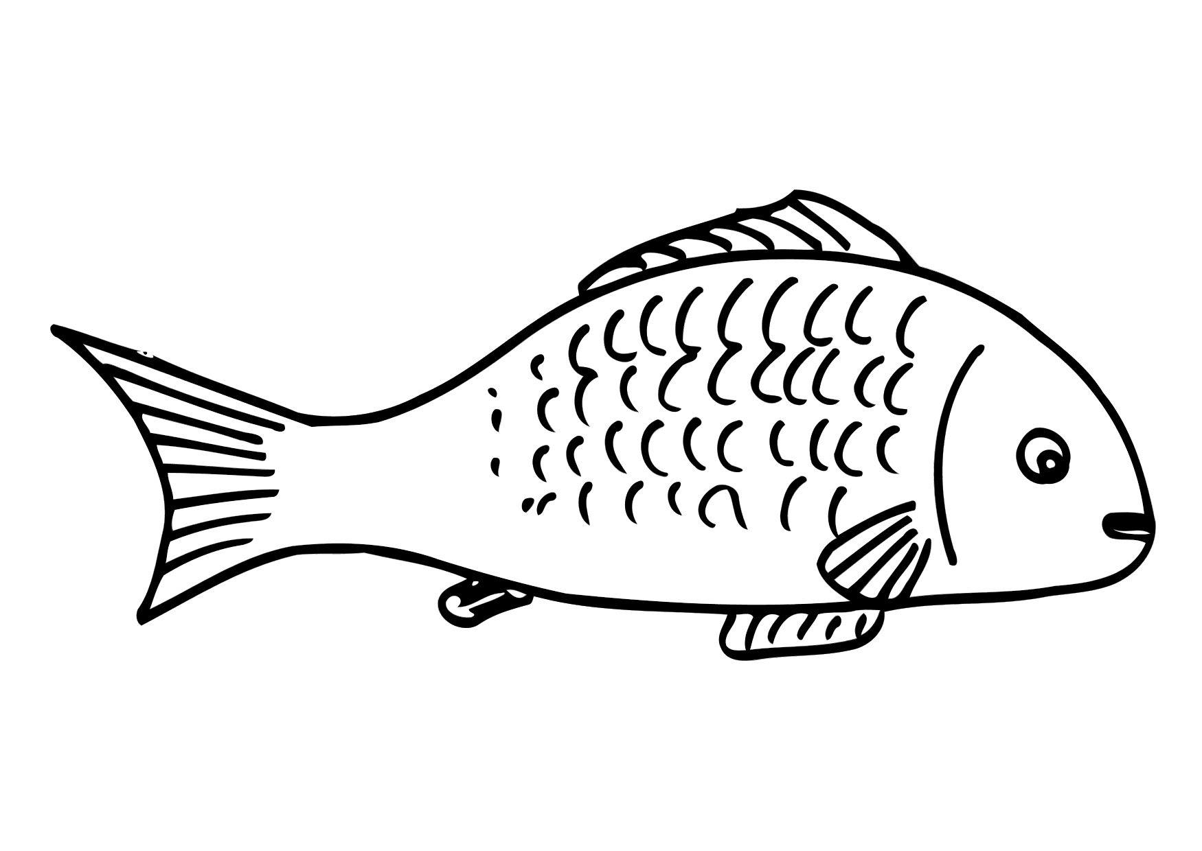 106 Dibujos De Pescado Para Colorear Oh Kids Page 9