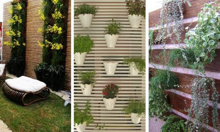 Fotos de decoração com jardim de inverno na vertical