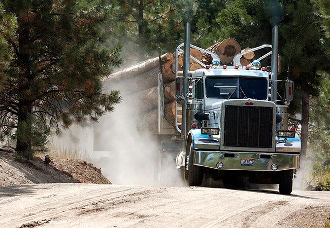 Image result for logging truck