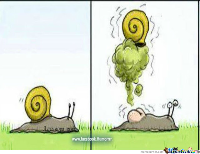 Quotes About Snail 96 Quotes