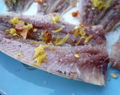 sardines!!