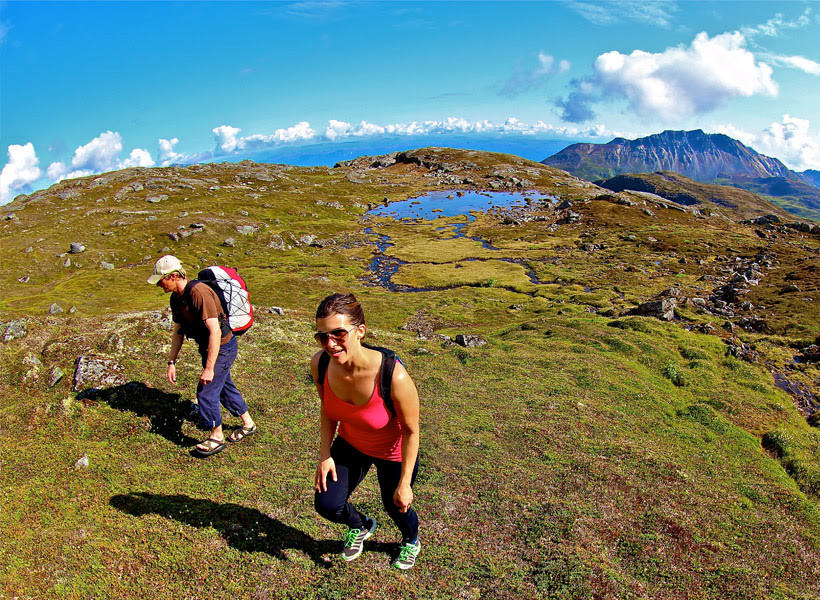 Alaska Nature Guides  HeliHiking A True Alaska Wilderness Experience