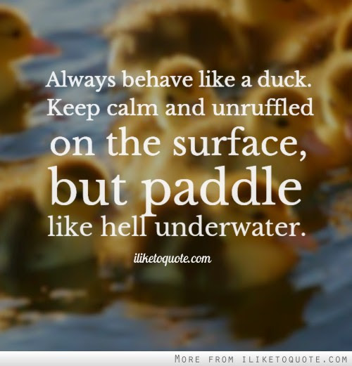 Always Behave Like A Duck Keep Calm And Unruffled On The Surface