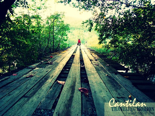 consuelo cantillan wood bridge