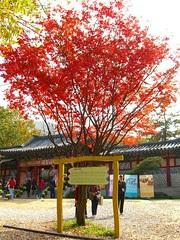 Da Chang Jing film site