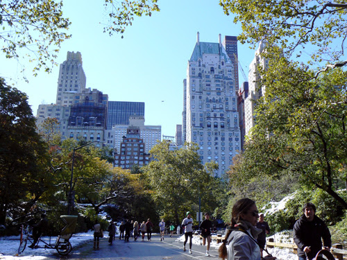 5th avenue Central park.jpg