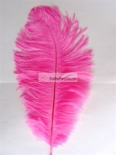 Hot Pink Ostrich Feathers Wholesale 12 14 inch 100 Pieces