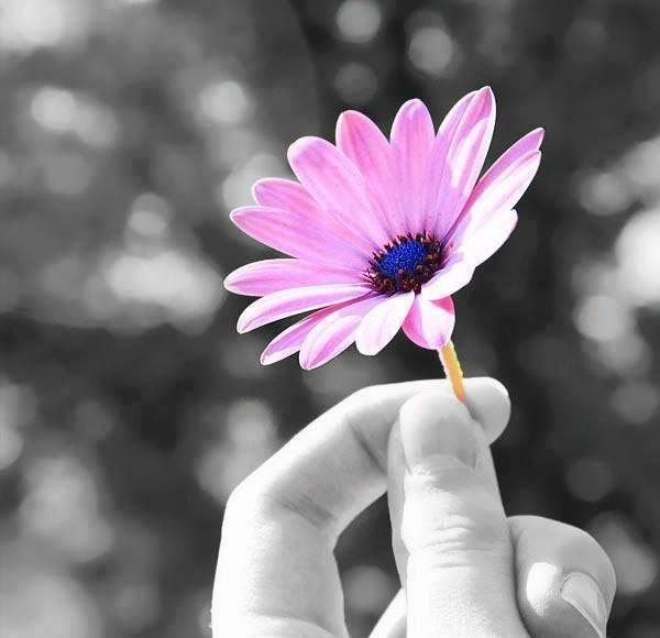 La memoria del cuore elimina i ricordi brutti ed esalta quelli belli, e grazie a questo artificio riusciamo a sopportare il passato.   Gabriel García Márquez