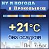 Ну и погода в Прокопьевске - Поминутный прогноз погоды