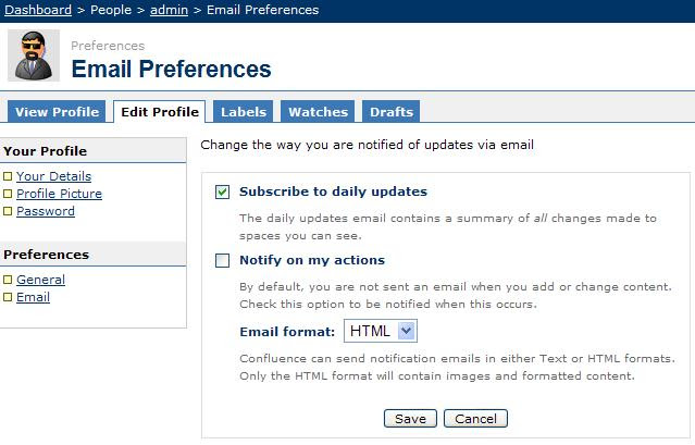Daily Report Mail Format