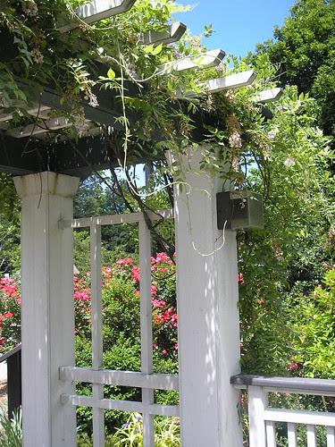 Frelinghuysem Arboretum! 32