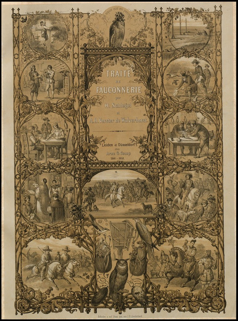 frontispiece / title-page of 'Traité de Fauconnerie' by H Schlegel, 1853