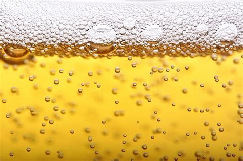 10 States Where People Drink The Most Beer