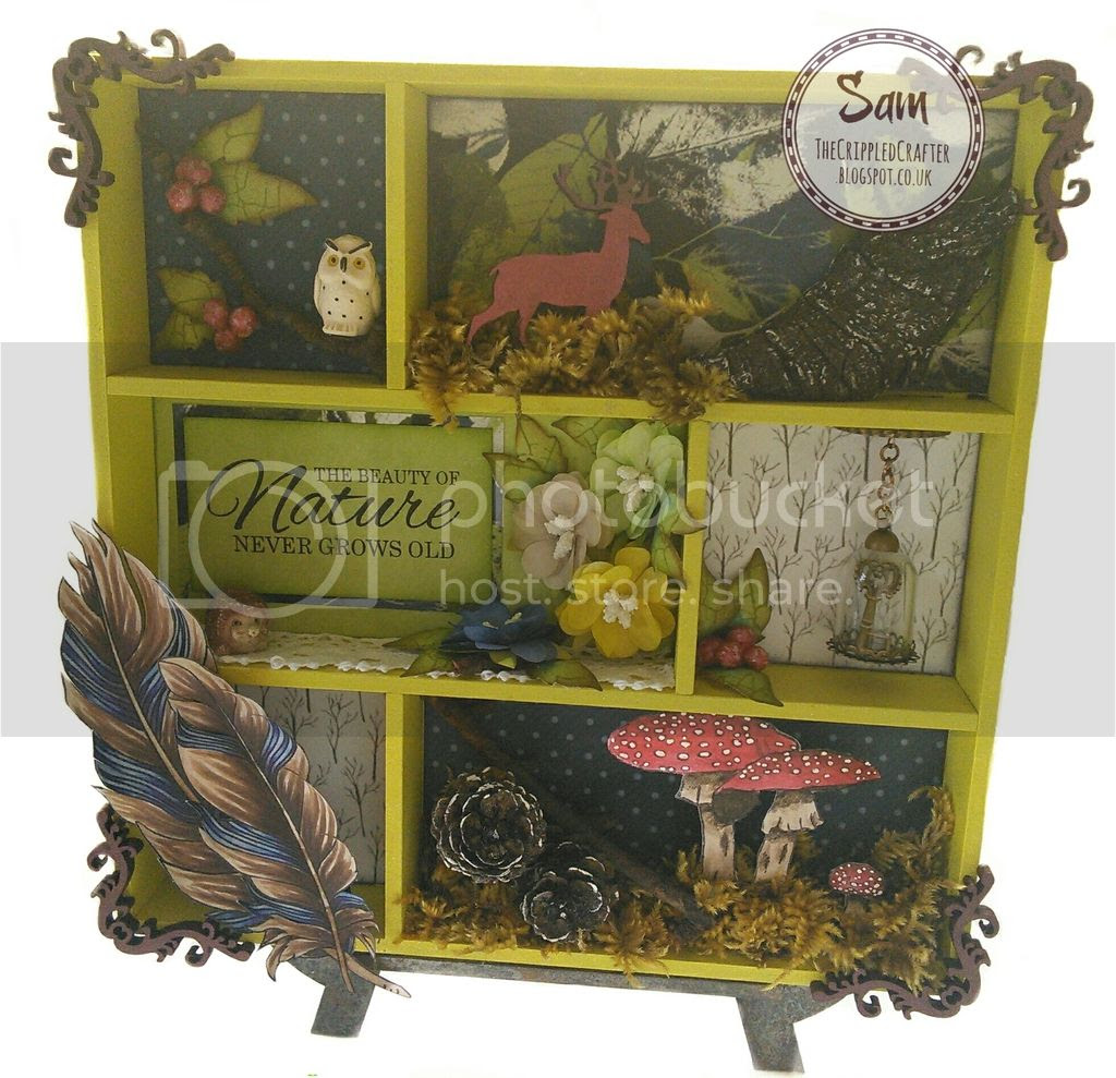 Printers Tray by The Crippled Crafter - Featuring That Craft Place, Petal Lu & Crafter's Companion