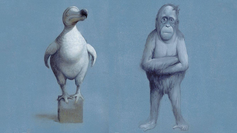 Foto: 'Pulpo, Orangután y Dodo' (2012), de Javier Sáez Castán.