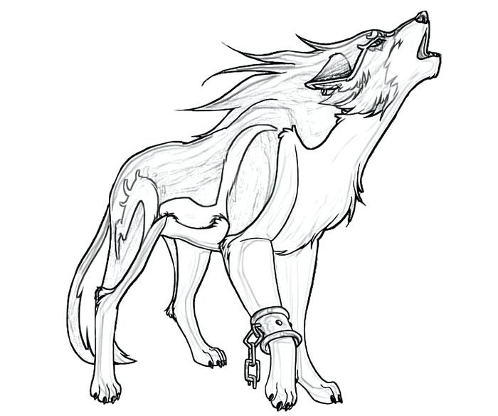 Anime Wolf Drawing at GetDrawings | Free download
