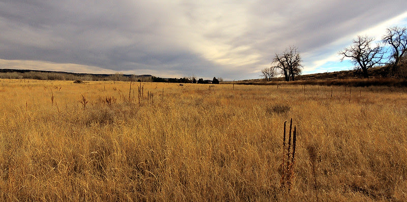 Hidden area of Chatfield State Park