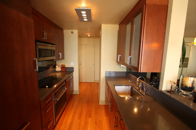 Gold Coast High-Rise Condo & Kitchen Gut Renovation and Interior