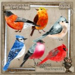CU Hand Drawn For the love of Garden Birds Clipart 3