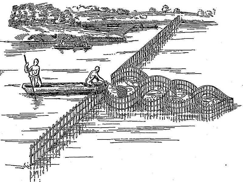 Fish weir of the Virginia Indiana (after Hariot).