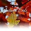 JD Warrick: Autumn Ends (EP)
