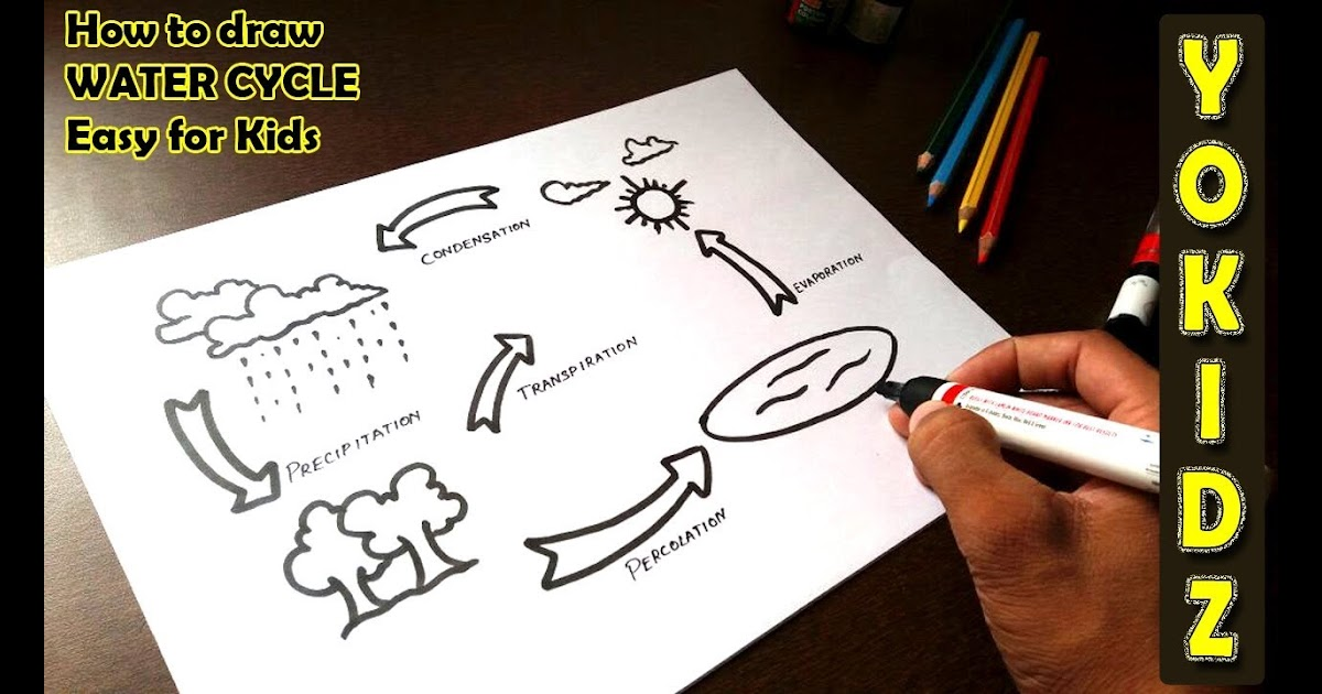 How To Draw Water Cycle In Easy Way Learn How To Draw