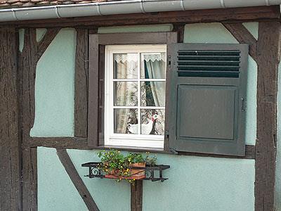 1 oie à la fenêtre.jpg