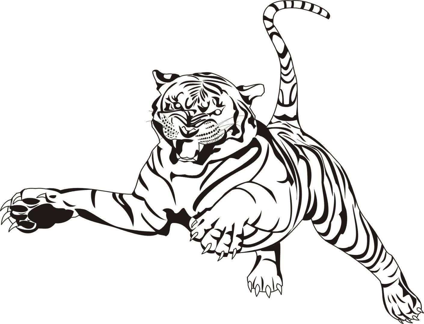 Dibujo De Tigre Saltando Imágenes Y Fotos