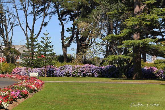 Rose Garden Invercargill Nzealand_2