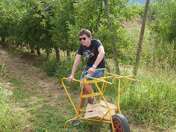 ramasseur de pommes