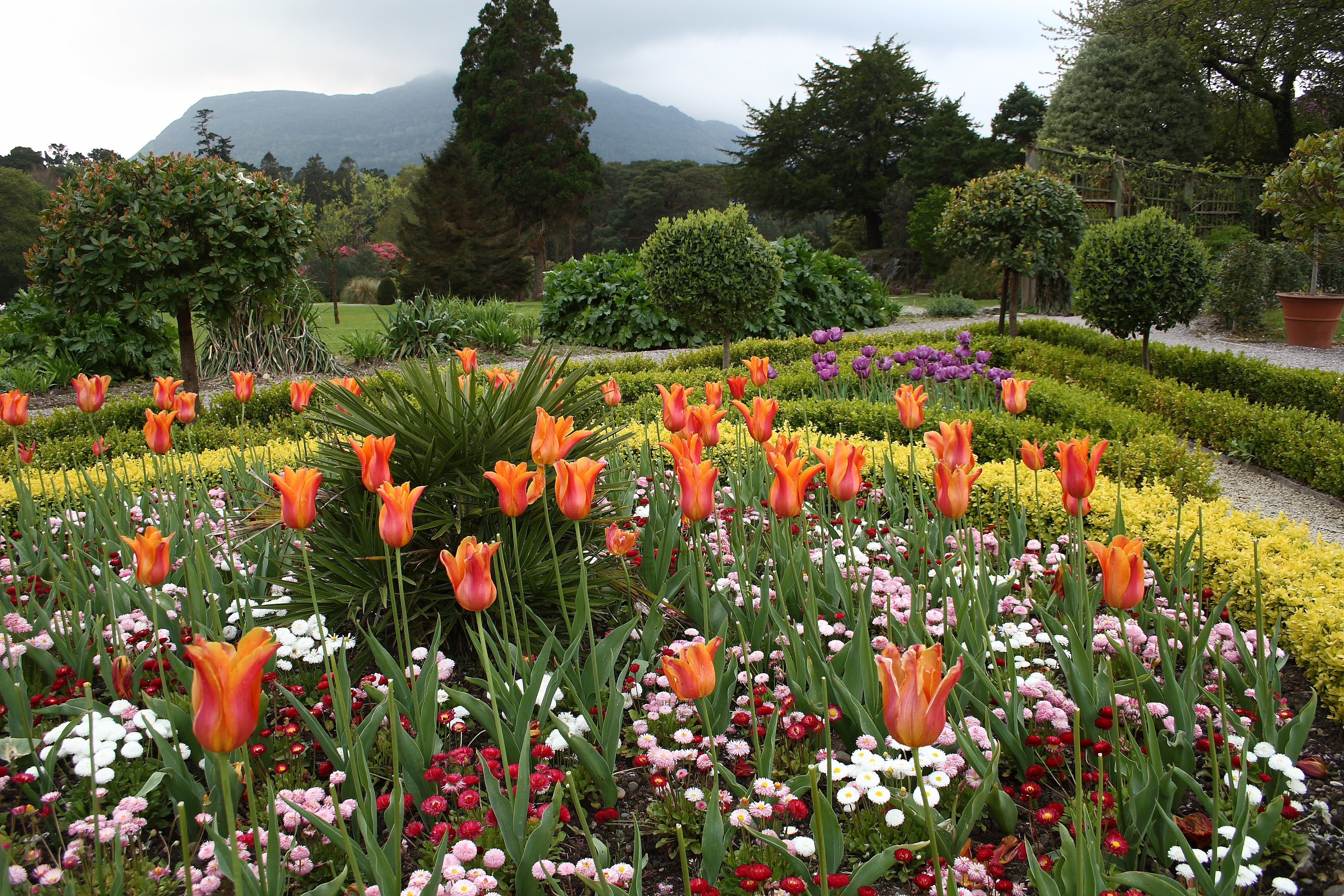 Description Flower Garden at Muckross House.jpg