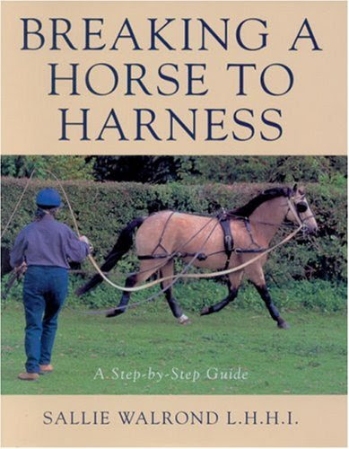A Guide To Breaking A Horse To Harness Infobarrel