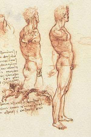 Figure drawing by Leonardo da Vinci.
