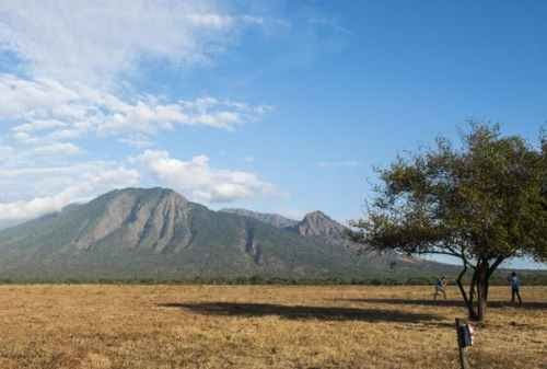 Baluran National Park, The Exotic Wildlife Of East Java Island oleh - panduanfitness.xyz