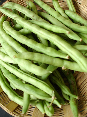 http://www.sailusfood.com/wp-content/uploads/2008/09/french-beans.jpg