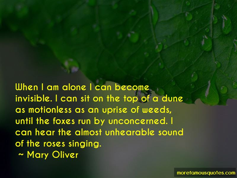 When I Am Alone Quotes Top 84 Quotes About When I Am Alone From