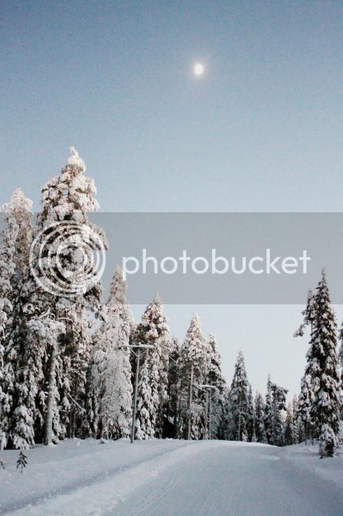 photo IMG_8199_zps9ad67117.jpg