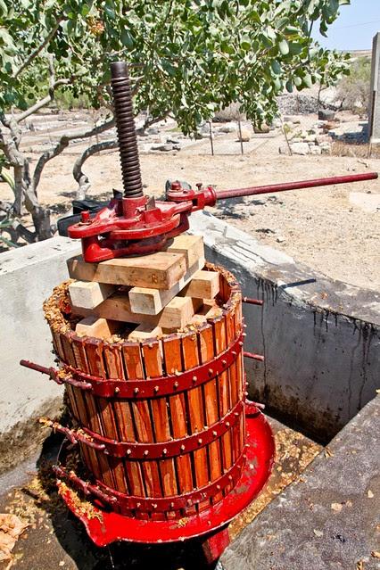 The Wine of Akrotiri