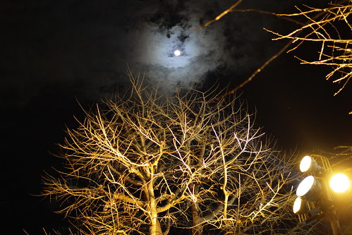 The moon was beautiful on the last day of 2012