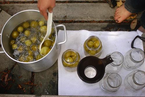 canning tomatillos