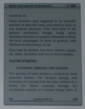 photo of Kindle e-paper display with text