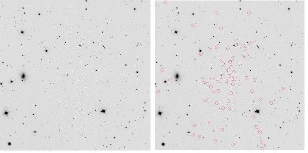 A sinistra, Segue 1 (la galassia non è visibile); a destra, le stelle che fanno parte di Segue 1 (cerchiate). Crediti: Marla Geha Yale University