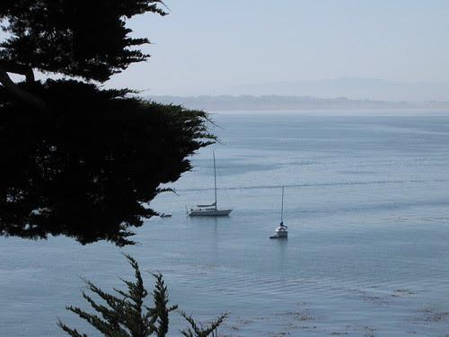 Good morning ocean!