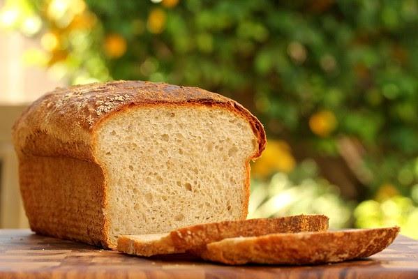 No Knead Light Wheat Sandwich Bread Karen S Kitchen Stories