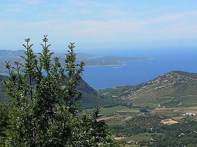 vue de Bastia 2.jpg