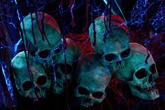 Carver's Pile of Skulls